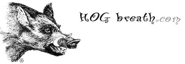 (tm) 2007 HOGbreath